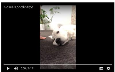 Sådan gør du: Lav undertekster til dine videoer via YouTube